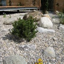 Holzterrasse in grüner Umgebung